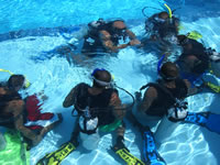 Dive Or learn how to dive ,